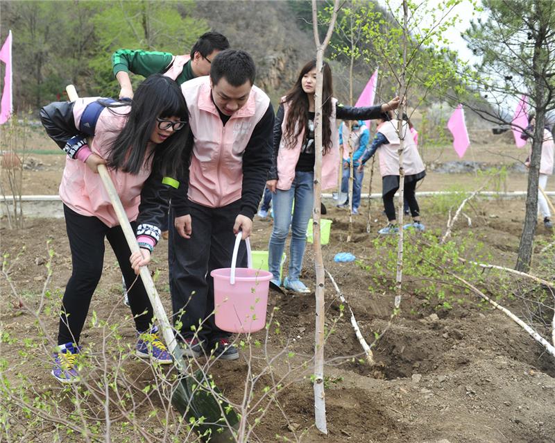 情侣志愿者为栽植树木浇水